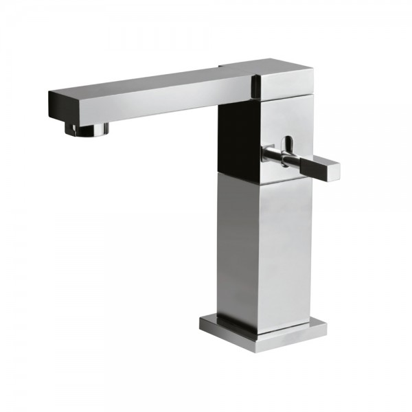 Single Lever Basin Mixer with Swivel Spout